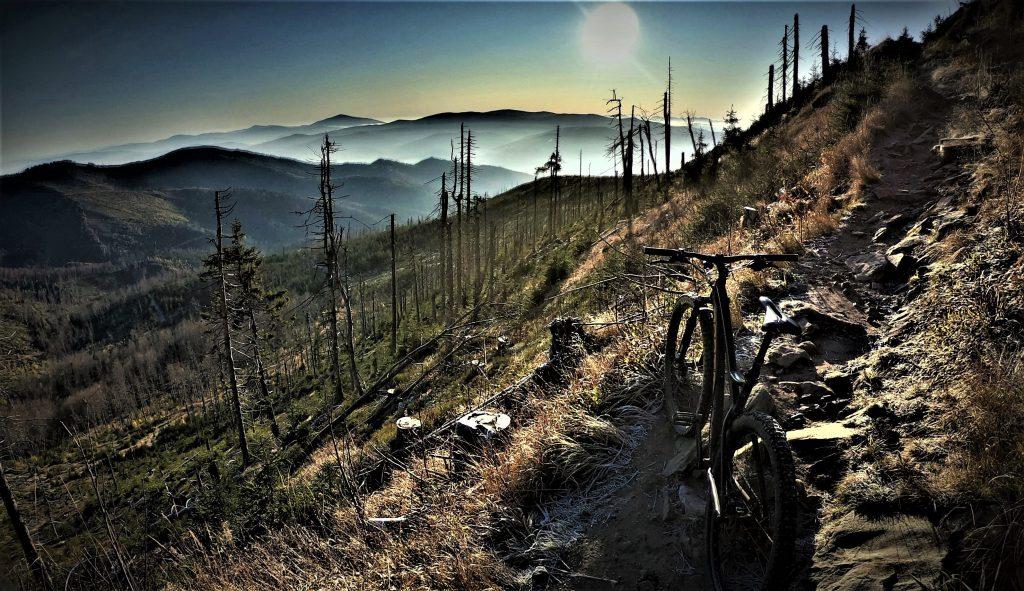 Klasyczna rąbanka w Beskidzie Śląskim, rowerem w stronę Baraniej Góry.