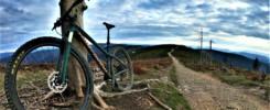 Łatwe trasy rowerowe w Beskidzie Śląskim